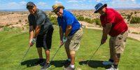 APCG_Golf_100
